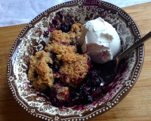 The Best Fresh Blueberry Cobbler