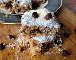Chocolate Chip Coconut Pecan Bars
