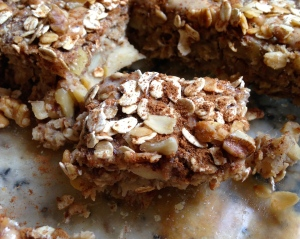 Apple Cinnamon Breakfast Cake Squares
