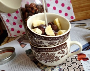 Gluten Free Chocolate Gingersnap Cereal